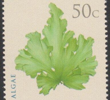 Algae - Barbados SG1324 - Algae 50c - Ulva Lactuca