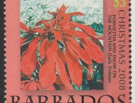 Barbados SG1335 - Christmas 2008 - $3 Poinsettia and Snow on the Mountain