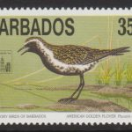 Barbados SG1019