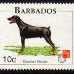 Barbados SG1101