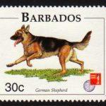 Barbados SG1102