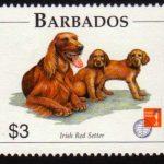 Barbados SG1104