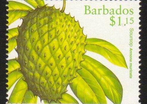 Barbados SG1118