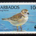 Barbados SG1134
