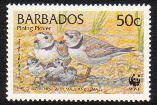 Barbados SG1136
