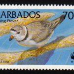 Barbados SG1137