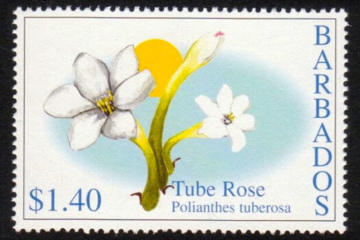 Barbados SG1213