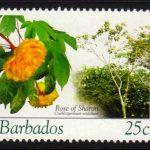 Barbados SG1268