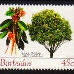 Barbados SG1269