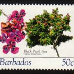 Barbados SG1270