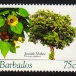 Barbados SG1271