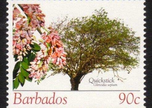 Barbados SG1272