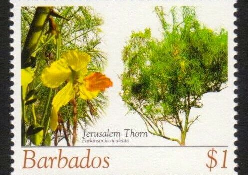 Barbados SG1273