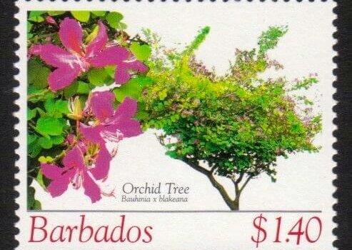 Barbados SG1275