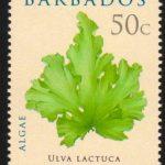 Barbados SG1324