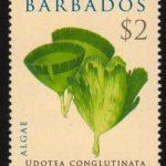 Barbados SG1326