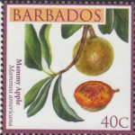 Local Fruits of Barbados - 40c Mammy Apple - Barbados SG1362