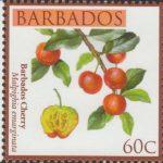 Local Fruits of Barbados - 60c Barbados Cherry - Barbados SG1363