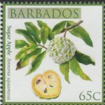 Local Fruits of Barbados - 65c Sugar Apple - Barbados SG1364
