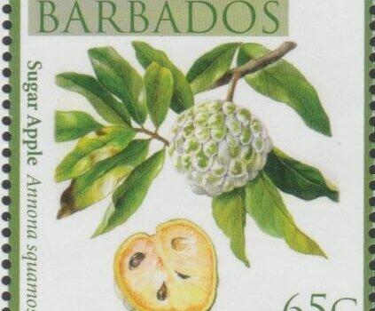 Local Fruits of Barbados - 65c Sugar Apple - Barbados SG1364
