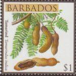 Fruits of Barbados - $1 Tamarind - Barbados SG1366