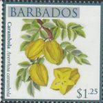 Local Fruits of Barbados - $1.25 Carambola - Barbados SG1367