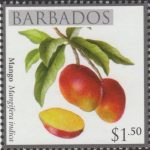 Local Fruits of Barbados - $1.50 Mango - Barbados SG1368