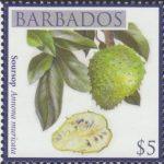 Local Fruits of Barbados - $5 Soursop - Barbados SG1373