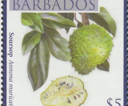 Local Fruits of Barbados - $5 Soursop - Barbados SG1373