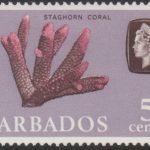 Barbados SG326