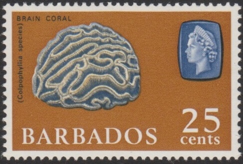 Barbados SG331