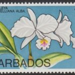 Barbados SG485