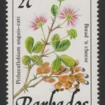 Barbados SG921