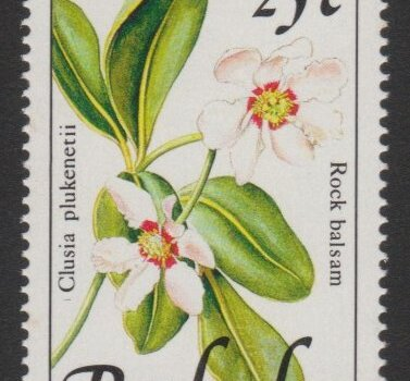 Barbados SG925