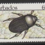 Barbados SG938