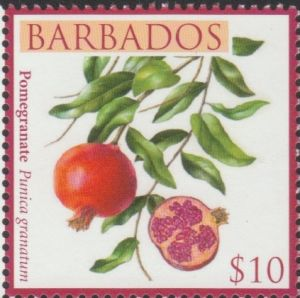 Barbados SG1374 $10 Pomegranate