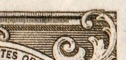 SG255v-close up