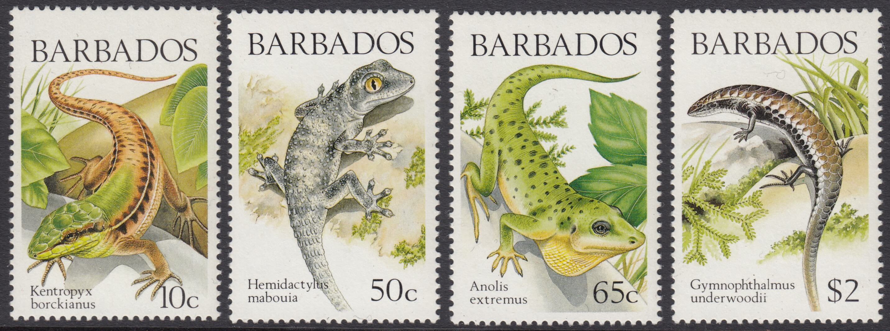 Barbados SG859-862 | Lizards of Barbados