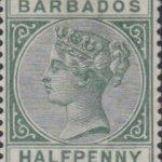 Barbados SG90 Green