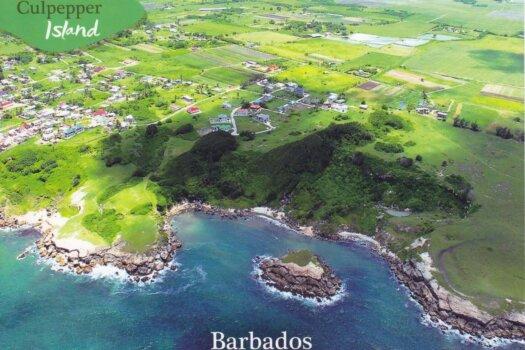 Barbados Stamps Pre Paid Postcard - Culpepper Island - Actual Card
