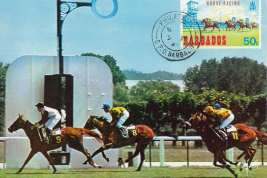 Barbados Horse Racing Commemorative or Souvenir Postcard 1