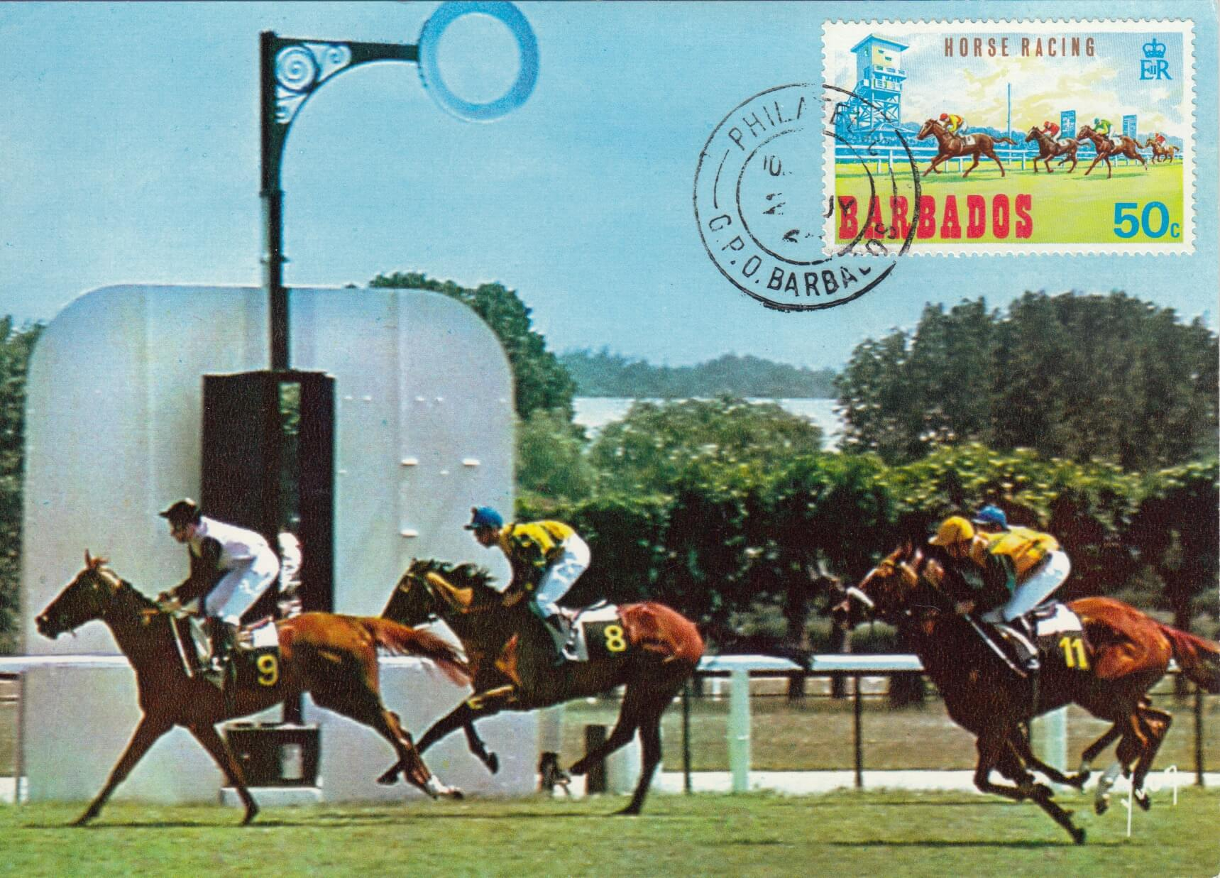 Unusual Barbados Horse Racing cards from the 1960's