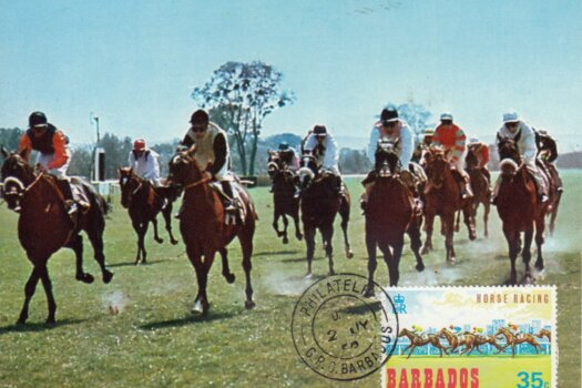 Barbados Horse Racing Commemorative or Souvenir Postcard 3