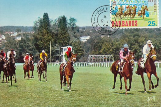Barbados Horse Racing Commemorative or Souvenir Postcard 2
