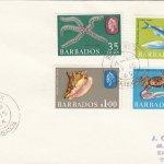 Barbados Marine Life FDC 1965 (3) - plain cover