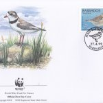 Barbados 1999 Wildlife (Piping Plover) WWF Official FDC 1 of 4