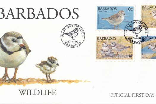 Barbados 1999 Wildlife (Piping Plover) FDC