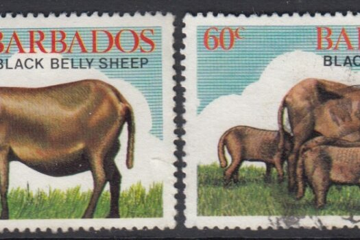 Barbados SG693-696 | Black Belly Sheep (Used)