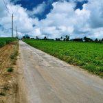 Barbados 'A' Road!