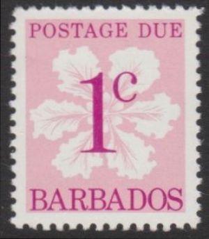 Barbados D14